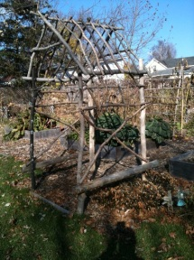 In 2010 I play with garden structures to add height and interest to the Potager, adding a rustic arbor in Fall.