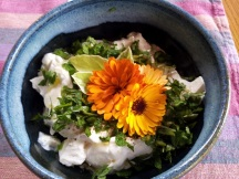 Calendula 'Flashback' flowers decorate a dip.