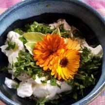 Calendula 'Flashback' flowers decorate a dip.