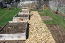 More planting beds were added and were created between the raised beds in the Spring of 2010.