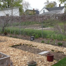 Newspaper was laid out and then topped with fresh mulch to create the paths.