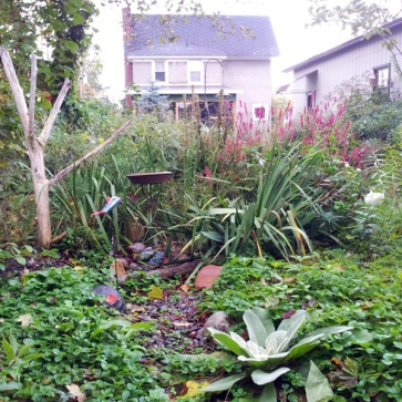 Looking back towards the house in late Summer 2012. The fence is barely visible. When understory trees, Service Berry (to the right) and Pagoda Dogwood, mature, the layers will be even deeper.