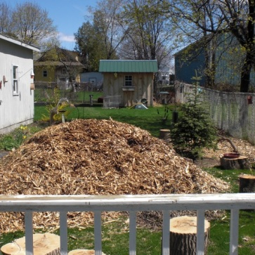 My Summer 2010 project –the foundation for the Woodland Edge. Better get that wheelbarrow.