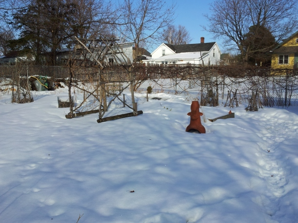 The Potager in February