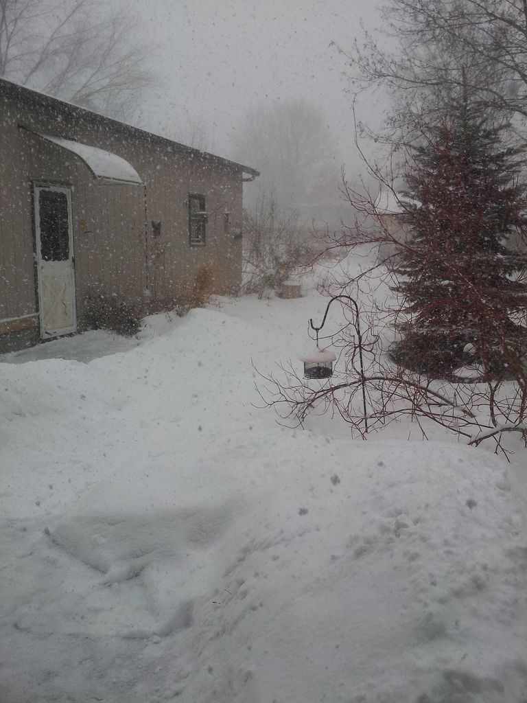 same snow dif day